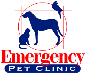 Emergency Pet Clinic San Antonio